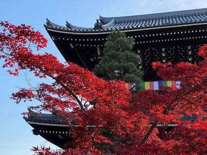 kyotokoyo1.jpg